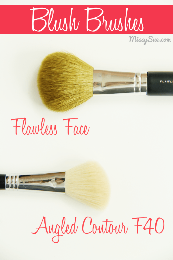 Blush Brushes 2 Favorite Makeup Brushes