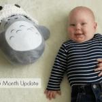 5 Month Postpartum Update